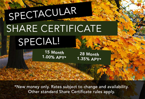 Spectacular Share Certificate Special!