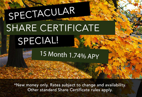 Share Certificate Special!